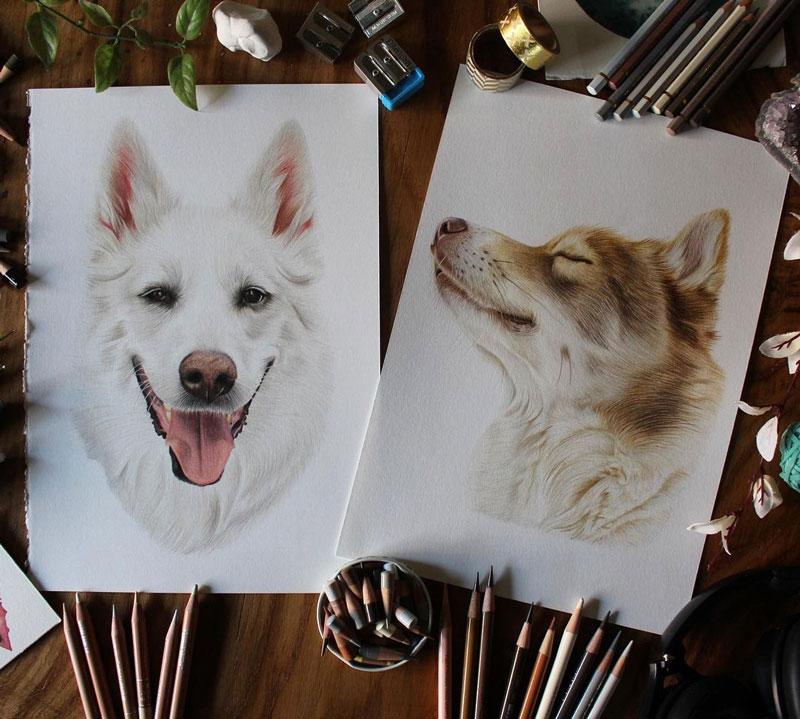 Colored Pencil Dog Portraits